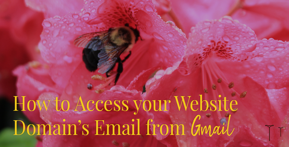 How to Access your Website Domain's Email from Gmail