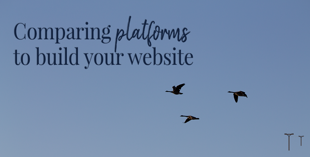 Comparing 3 Popular Platforms to Build Your Website